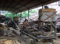 Shandong linyi brilliant wood processing plant